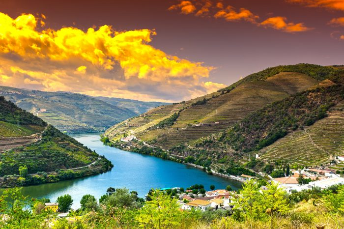 8-Day Tour of Portugal / Private Tour, including Lisbon, Porto, Douro