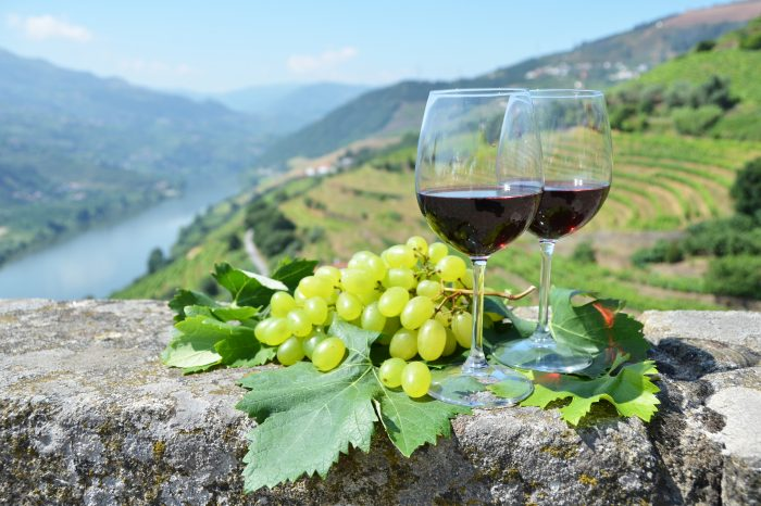 7-Day VIP Wine Tour of Portugal / Including Best Wine Regions